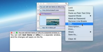 Savvy Clipboard 2.10.1 de BlitzClick Software