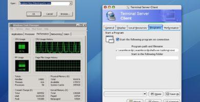 TSclientX 2.0 de Desktopecho Inc.