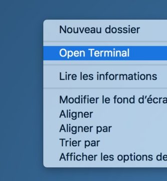 Open Terminal 1.2 de Quentin PARIS